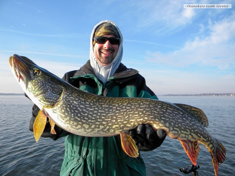 Early Season Pike Action